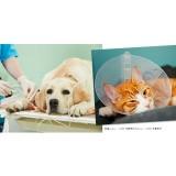 [PR]7割の飼い主さんがペットの医療費にビックリした経験あり。あなたならどう備える?