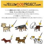 PW_v0029_yellowdog_121024